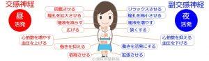 須賀川整体院、自律神経:交感神経:副交感神経