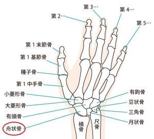 須賀川整体院、腱鞘炎