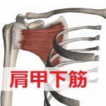 【肩甲下筋】の須賀川整体院式ストレッチ