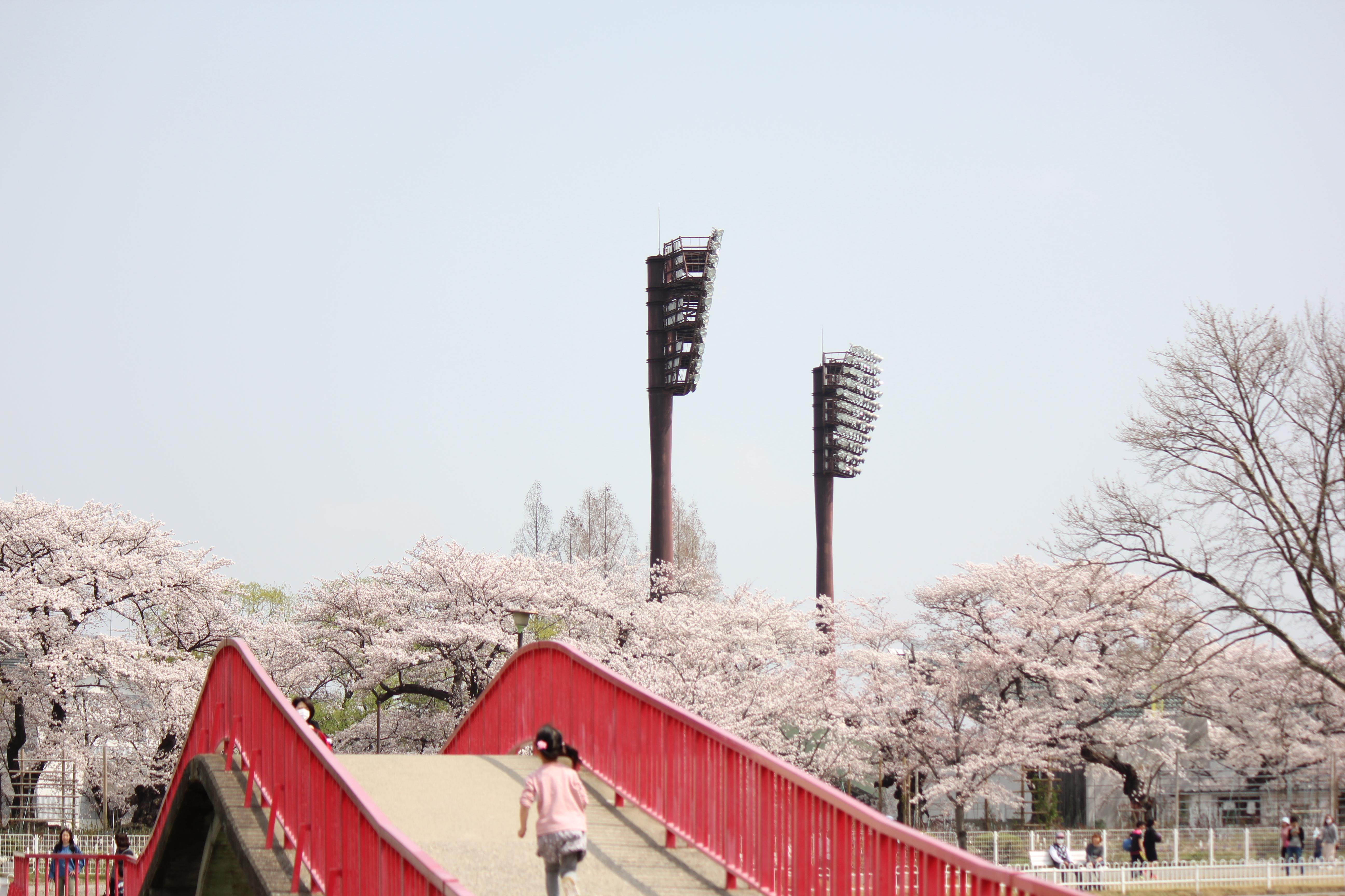 開成山五十鈴橋